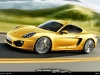 cayman-2013-yellow